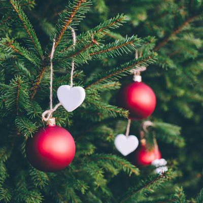 """{[if_not_description]}Koncert Świąteczny –  """"Życzę Ci"""