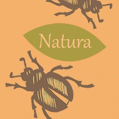 {[if_not_description]}Natura - wirtualne wycieczki, domowe eksperymenty!{[/if_not_description]}