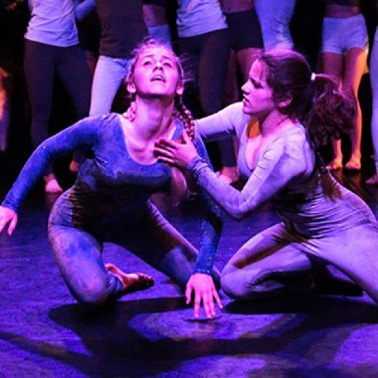 Feniks Showdance